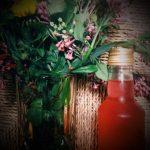 Schluck für Schluck durch den Frühling: Flieder-Zitronenmelisse-Sirup