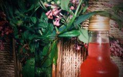 Flieder-Zitronenmelisse-Sirup